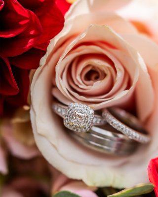 Marriage? Yea it has a nice ring to it.#wedding #weddingphotography #weddinginspiration #ringphotography #photography #photographer
